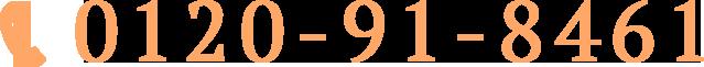 0120-91-8461